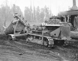 [Logging by Caterpillar tractor near Elk River]