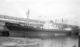 M.S. Jalagurda [at dock]