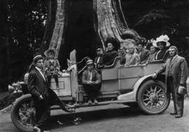 Godfrey family in an open touring car at the hollow tree in Stanley Park