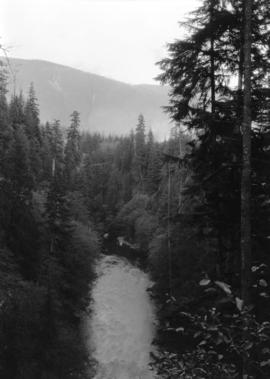 Capilano Creek