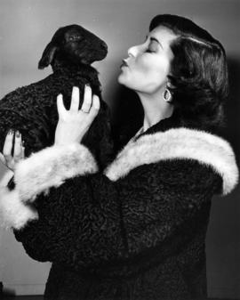 Lady in fur coat holding a black lamb
