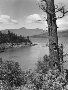 [View of Howe Sound, with dead tree in the foreground]