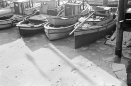 [Fish boats in ice at dock]
