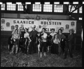 Saanich Holstein 4-H Calf Club members with cattle