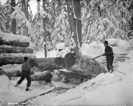 [Men loading logs onto flatbed railway car in snow covered forest]