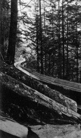 Close-up of flume curling around Capilano Canyon