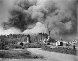 Eagle Lake Sawmills, Giscome, B.C.  A forest fire that came very close to the mill