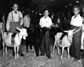 4-H and Junior Farmers of Canada participant, man, and woman posing with award-winning goats
