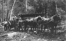 [Horses and wagon at McColl and Wilson logging Camp 2]