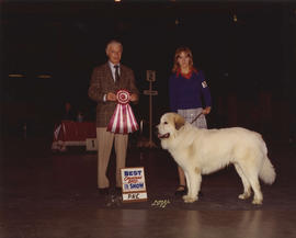 Best Canadian Bred in Show award being presented at 1974 P.N.E. All-Breed Dog Show [Great Pyrenees]