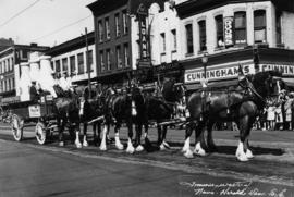 Jersey Farms six-horse team in P.N.E. Parade showing northwest corner of Hastings and Columbia