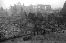 [Smoldering ruins of New Westminster after the great fire]