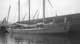 [Aux.] S. Lady Kindersley [at Evans, Coleman and Evans dock]