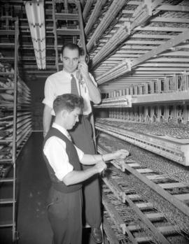 [B.C. Telephone personnel wiring switches at the Bayview Cedar Exchange]