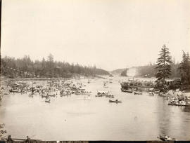 Regatta at the Gorge, Victoria, B.C.