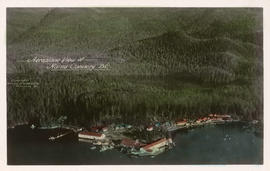 Aeroplane View of Namu Cannery, B.C.