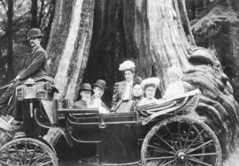 [Unidentified family in] landau [in front of Hollow Tree]