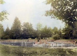 [Children wading in the pond at Bowser (Maple Grove) Park]