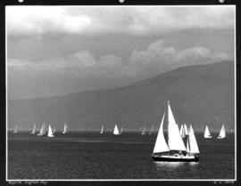 Regatta, English Bay
