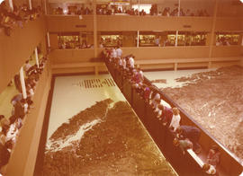 Crowd viewing the Challenger Relief Map