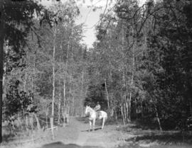 [Man on horse in Cascade (Coast) Range near Skagit Valley]