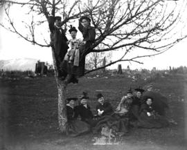 [Men and women assembled in and around tree in Tom Turner's orchard]