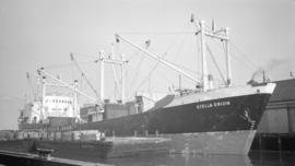 M.S. Stella Orion [at dock, with lumber-filled barges alongside]