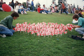 Small Canada flags planted in grass during the Centennial Commission's Canada Day celebrations