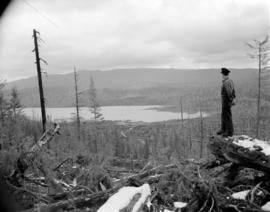 [View overlooking] Pacific Mills [logging site on the] Queen Charlotte Islands