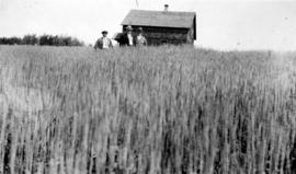 [Board of Trade trip - Board members standing in wheat field]