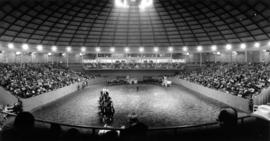 Six-horse teams pulling wagons in the Agrodome