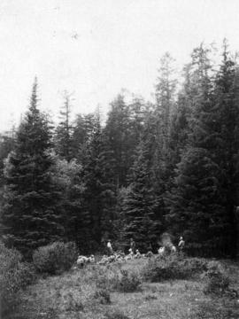 [V.N.H.S.] lunch at lower end of Bootahnie Lake