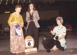 Group six [Non-Sporting Group: Miniature Poodle] award being presented by judge J.S. Fletcher at ...