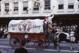48th Grey Cup Parade, on Georgia and Howe, Cross of Calgary wagon and horses