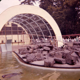 [The seal pool and monkey enclosure in zoo at Stanley Park]