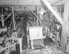 Imperial Canning [production lines in the plant]