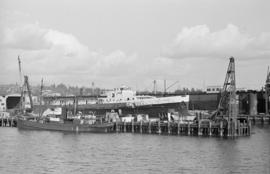 "[View from the water of S.S. ""Prince Robert"" at Wallace Shipyards]"