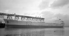 M.S. Bandak [at dock]