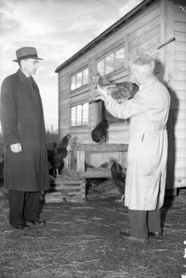 [Jacob Biely and Dr. E.A. Lloyd with roosters at the University of British Columbia experimental ...