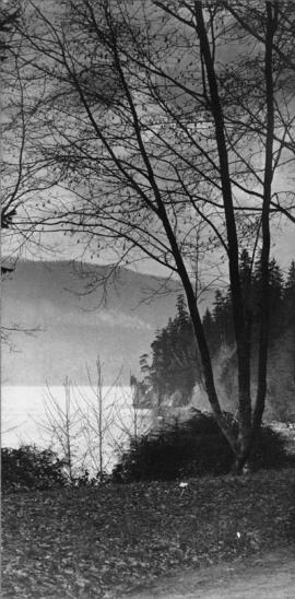 [Shoreline of Stanley Park, showing Siwash Rock in the distance]