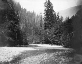 Coquitlam Dam [showing] first rapids, Schuyler Creek
