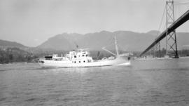 M.S. Norango [appraoching the Lions Gate Bridge from the west]