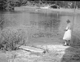 [Woman feeding ducks on Bowen Island]