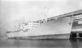 M.S. Hoegh Silverstar [at dock]