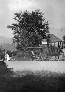 [Horse-drawn carriage in Stanley Park]