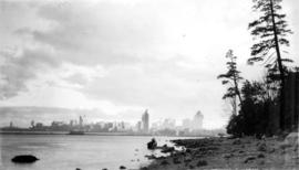 View of Stanley Park from the shore of Stanley Park