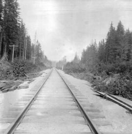 Great Northern Railway track (from New Westminster to Vancouver) at Piper Mill, Piper Siding