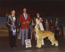 Best Canadian Bred Puppy in Show award being presented at 1975 P.N.E. All-Breed Dog Show [Afghan ...