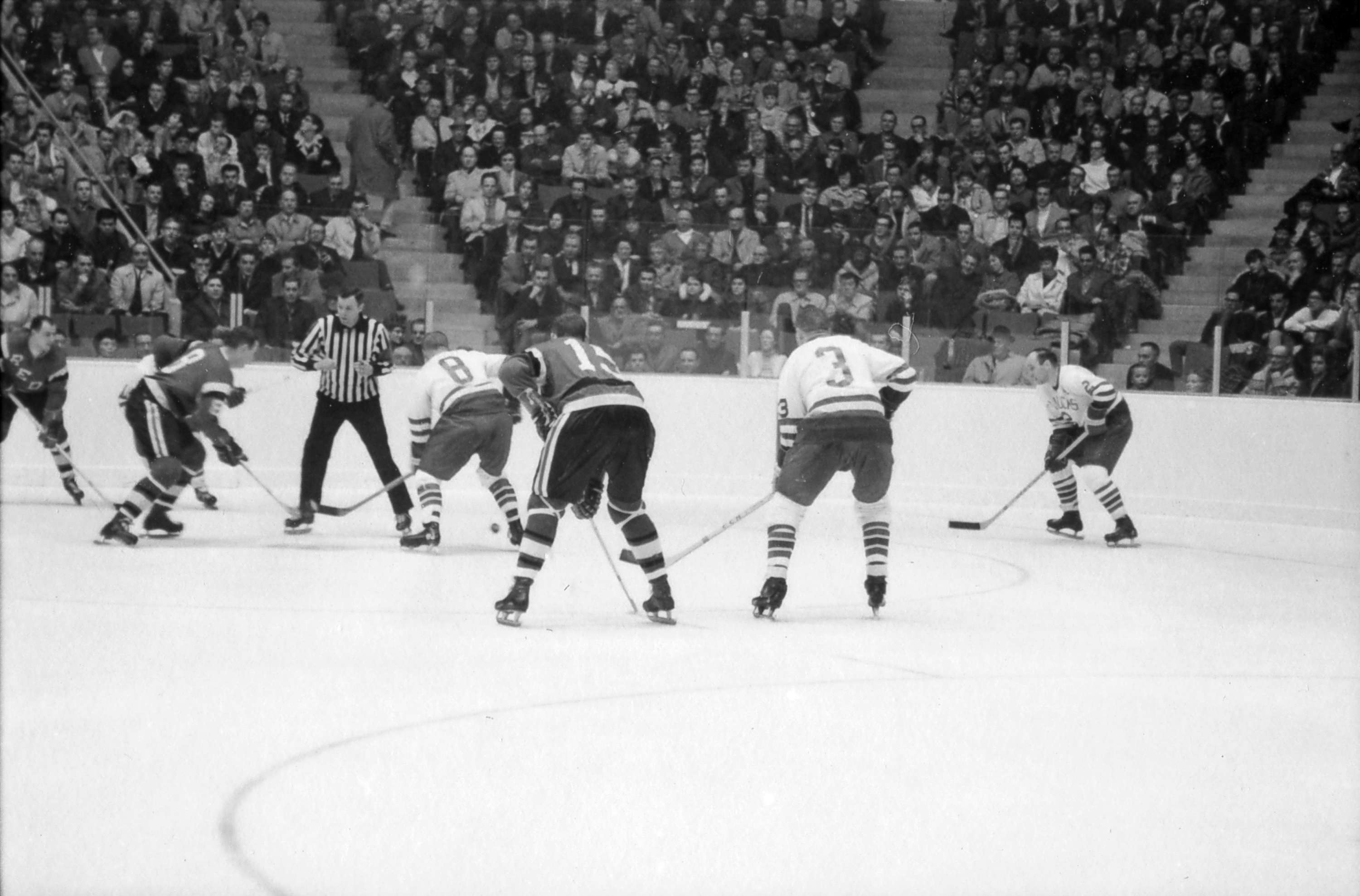 Vancouver Canucks Whl Hockey Game In Pacific Coliseum City Of