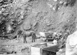 [Men using horse-drawn carts to clear site for Buntzen Lake Power Plant number one]
